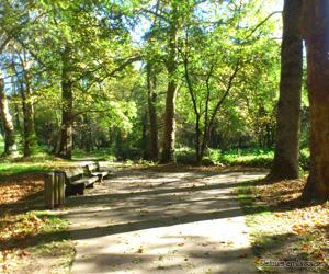 Allées du parc du Mas Rome
