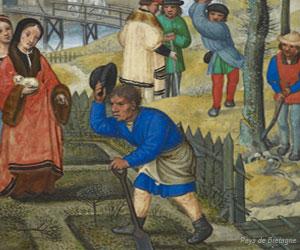 Jardin potager médiéval