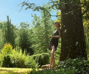 Visite et promenade dans l'arboretum