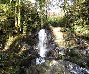 La cascade de La Roche