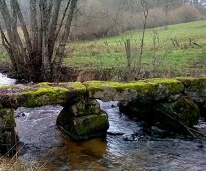Pont planche de La Valette