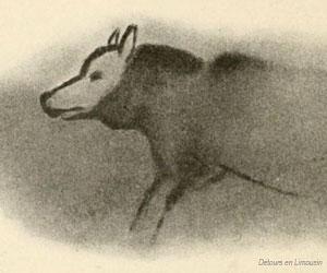 Dessin polychrome d'un loup à Font-de-Gaume