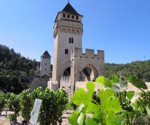 Le pont Valentré de Cahors et les vignes