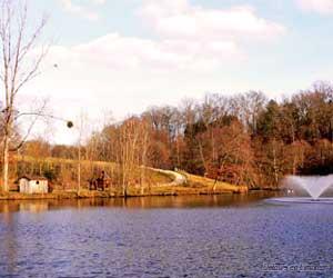 Le Parc de l'Aurence I