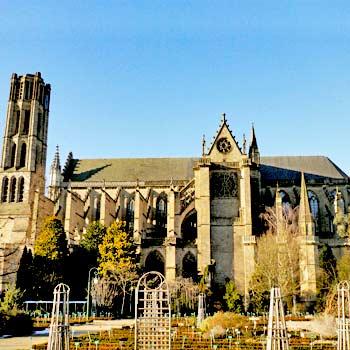 La cathédrale vue des jardins