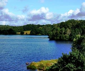 Le Lac de Saint-Pardoux