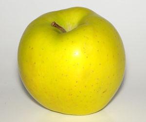 La Pomme Golden AOC du Limousin